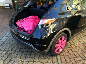 Pink Tussi Honda Civic