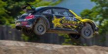 Rallye Beetle