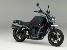 Honda Bulldog Bike