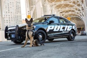 US Polizeiauto Ford Police Responder Hybrid Sedan